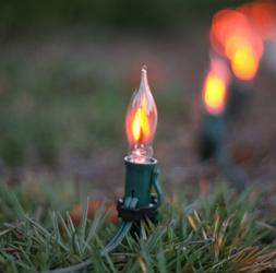 2-Pack Flicker Flame Holiday Fire Mini Light Bulbs E12 Cande
