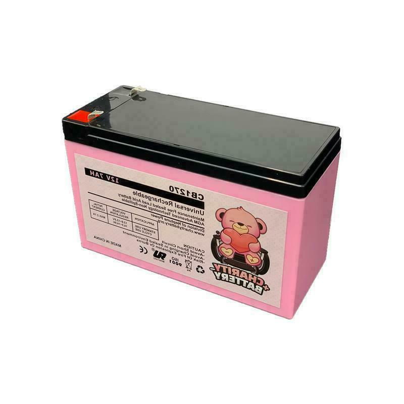 CHARITY 12V BATTERY FOR E200 & ELECTRIC Pack